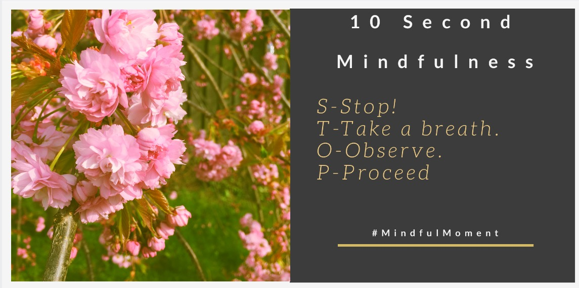 Mindfulness For Children – Top Test Taking Tips for PARENTS